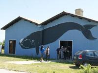 Museu da Baleia Franca